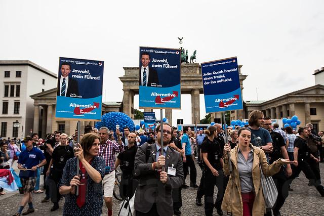 Die PARTEI beim AfD Wahlkampfabschluß Berlin 23.05.2014-0102