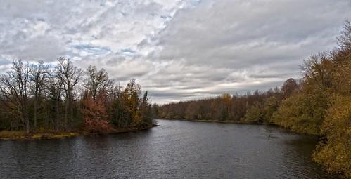 autumn leaves colours logs mississippiriver trunks easternontario