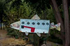 Fish Mail Box