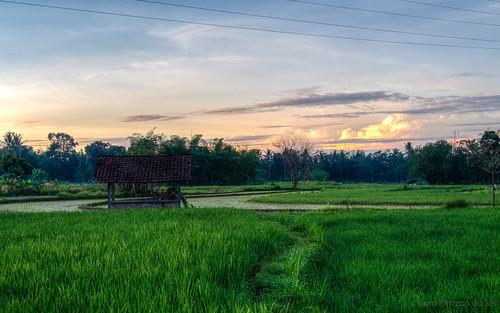 hdr indonesia indonésie java yogyakarta salam javacentral green vert 500px