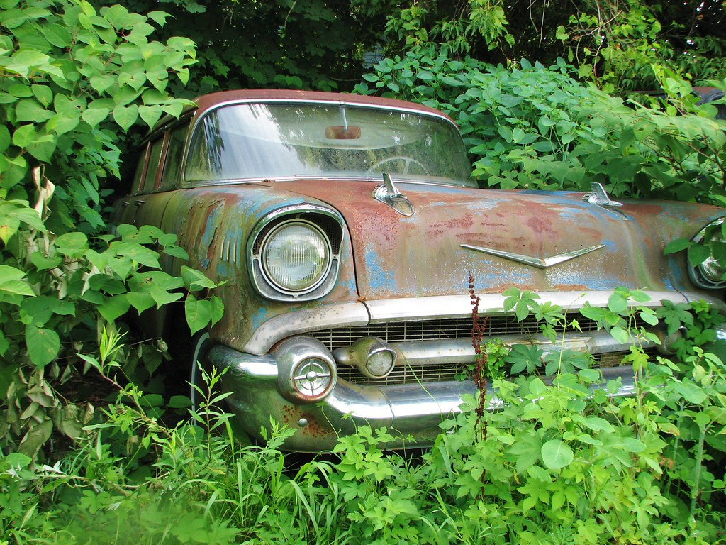 A RUSTY 1957 CHEVY WAGON IN THE WEEDS IN JULY 2013