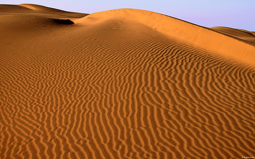 थार रेगिस्तान Thar Desert, Jaisalmer, Rajasthan, India | by juanalbertogarciarivera