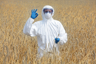 shutterstock_151139177 success - agricultural engineer with ok gesture on field of crops | by 5M Publishing