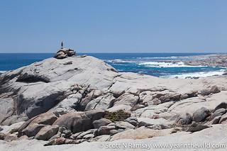 Namaqua National Park - South Africa   by scottnramsay
