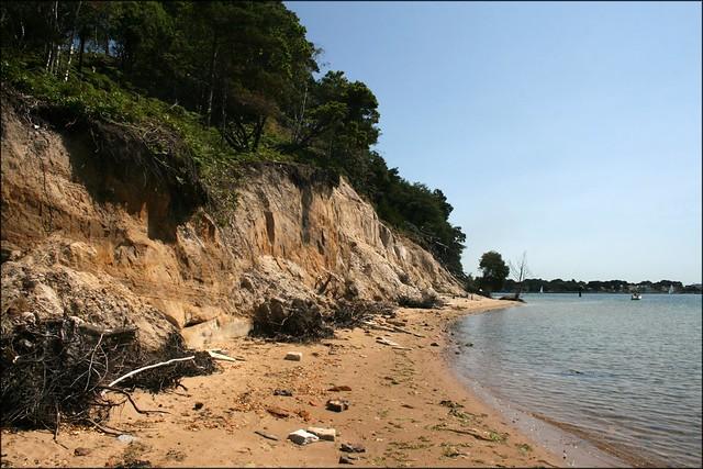 The south coast of Brownsea Island