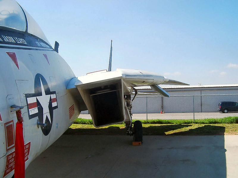 F-14A Tomcat  (6)