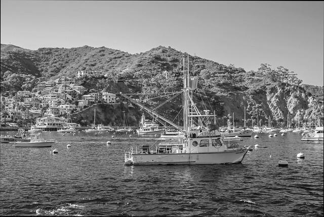 Catalina Fishing Boat