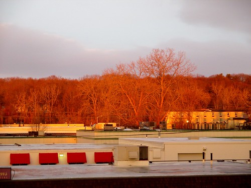 sunrise massachusetts brightcolors highlight westspringfield burningtrees ahobblingaday again5minutesofcolor