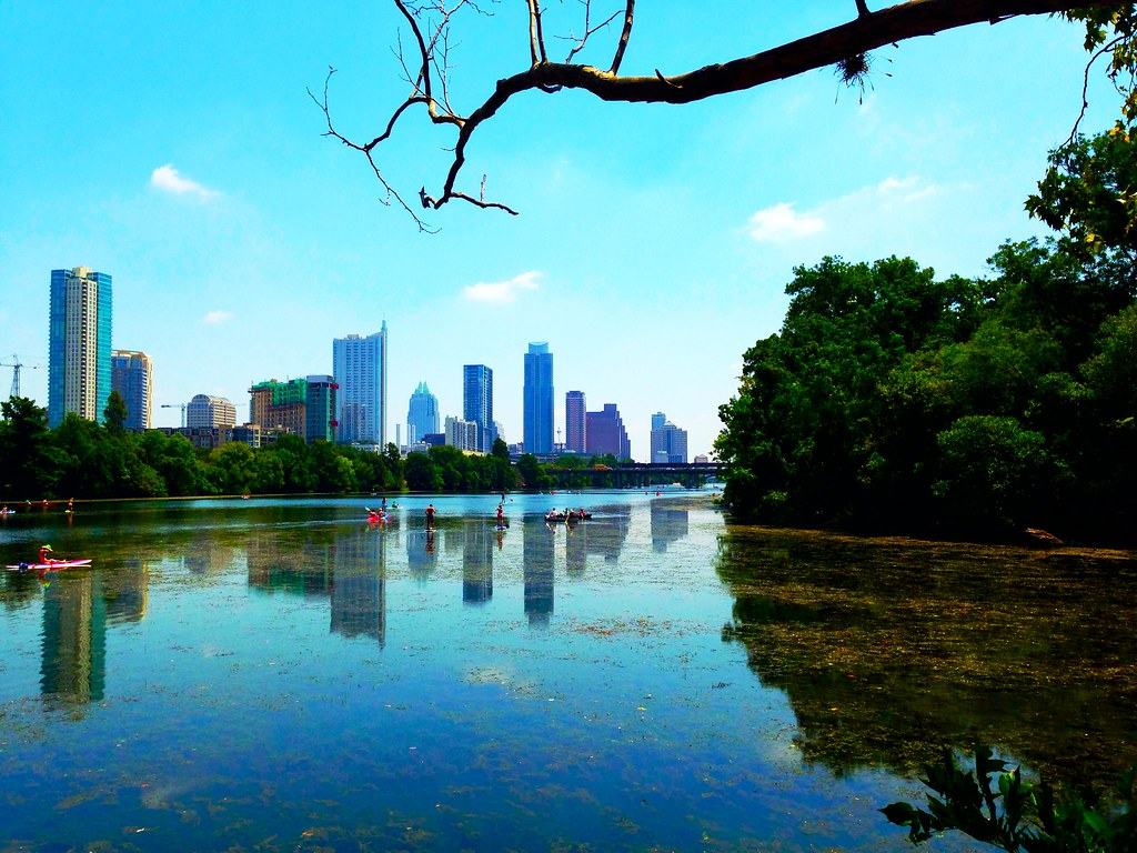 Skyline, Treeline, Austin