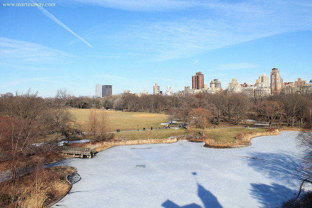 The park.