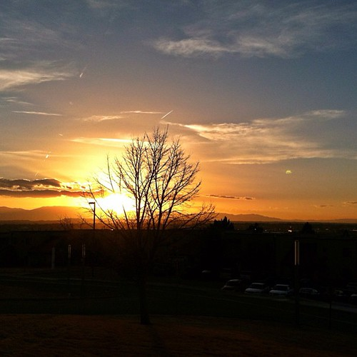 sunset cowx uploaded:by=flickstagram instagram:venuename=coloradostateuniversitypueblo instagram:venue=6544690 instagram:photo=40633265356022310211996620
