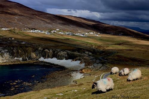 ireland irish beach island seaside images mayo achill