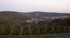 View over Uhlbach, 23.10.2011.