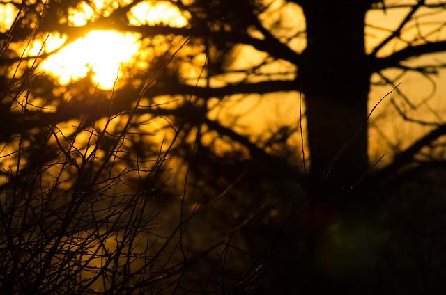 Sunset in Giarole (AL)