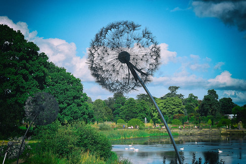 Dandelion Sculpture (25/09/2016)