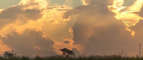sky sun sunlight sunrise sunny trinidadandtobago tunapunapiarco