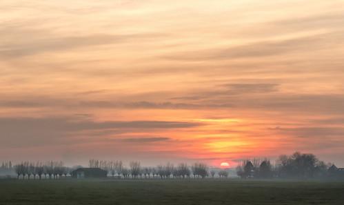 middendelfland fog grass grassland mist shed sky sundown sunset trees nederlandvandaag