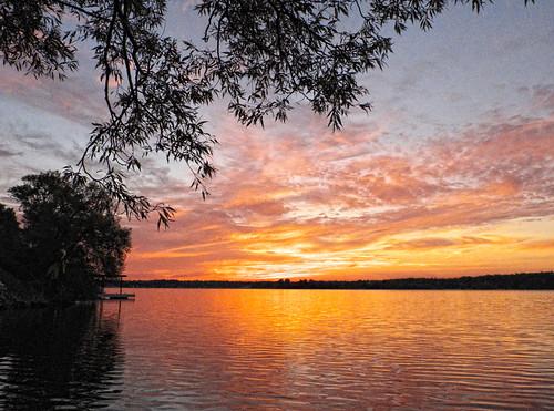 ontario tree water clouds sunrise kingston lakeontario collinsbay