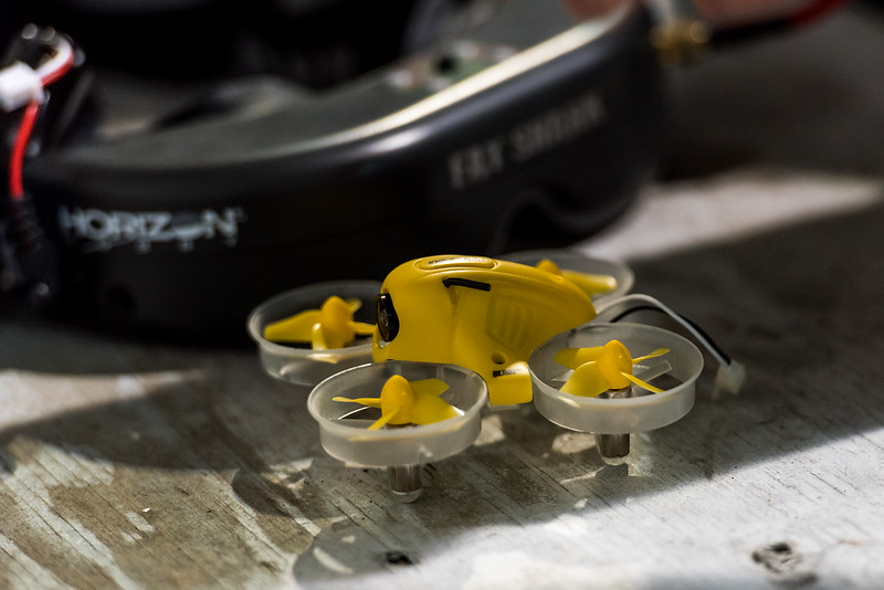 Nathan's Inductrix FPV.