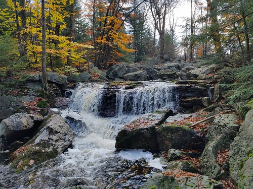 Falls on South Brook at outlet of swamp