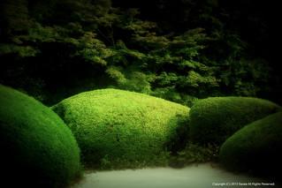 The Japanese garden of summer | by Saraia77