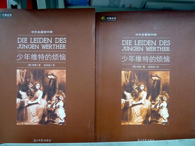 German literature in the local supermarket