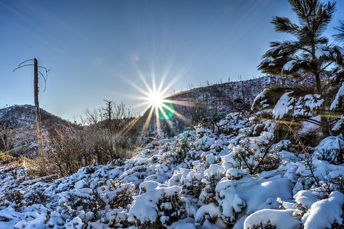 arizona snow sunrise unitedstates coronadonationalforest redridge santacatalinamountains mountlemmon redridgetrail