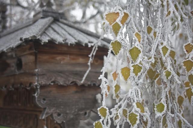 12-20-2013 Frostbite