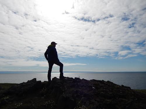 IJsland - Hafnaberg - 4