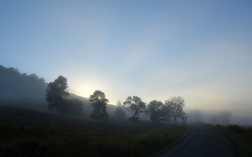road trees shadow fog sunrise landscape countryside day foggy earlymorning australia nsw sunrays australianlandscape foggymorning ruralaustralia northernrivers rurallandscape morninglandscape australianweather leycestercreekvalley rockvalleyroad