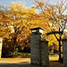 Fall Campus Pictures