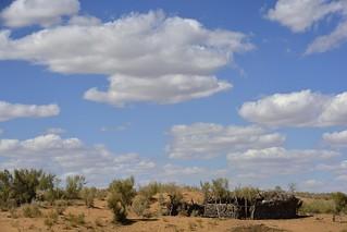 Kyzyl Kum Desert, Uzbekistan | by stefan_fotos