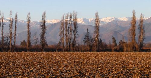 chile winter rancagua cachapoal