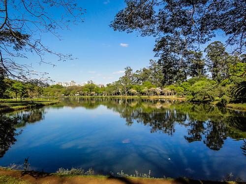 brasil lago sãopaulo natureza beleza arvores parqueibirapuera
