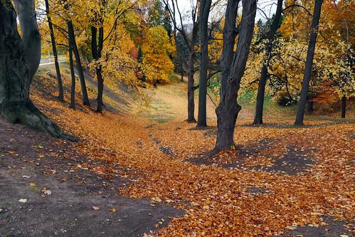 fallcolors pr3hole highlandpark