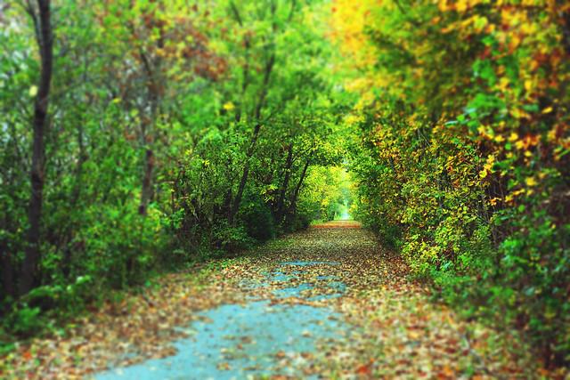 Whispers of Fall - Take II