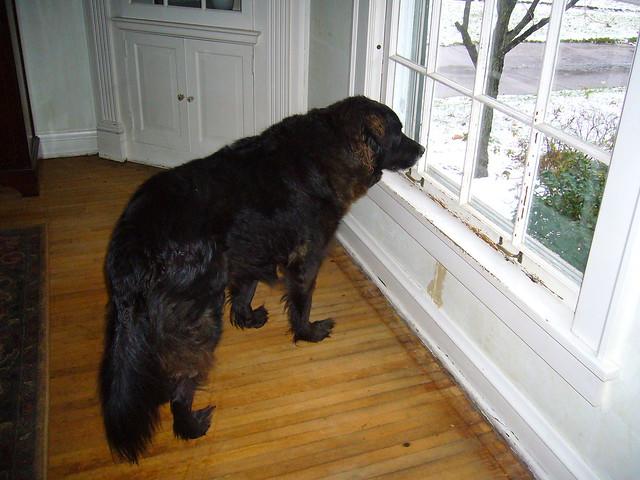 Checking the perimeter