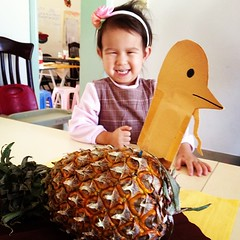 Pineapple turkey head has been with us for 9 Thanksgivings - Maddie's only been with us for 3.