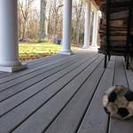 Soccer ball, no dog