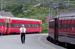 Myrdal Station