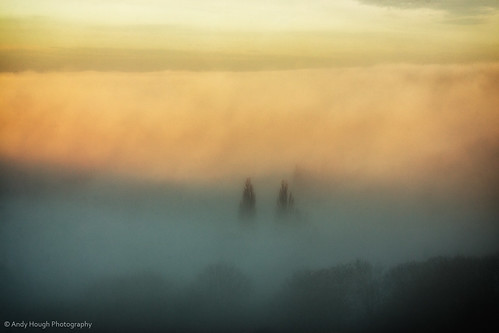 trees mist painterly sunrise landscape golden sony oxfordshire a77 southoxfordshire sonyalpha andyhough slta77 andyhoughphotography