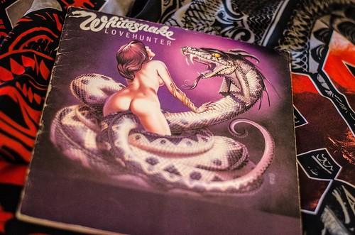 Whitesnake (3)