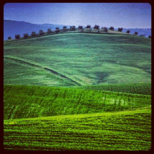 Toscana.. #tag #jj #jj_forum #mancio65 #alfredomancini #instagram #web #photo #photographer #cool #clubsocial #phonography #instamood #colore_italiano #clubinstagram