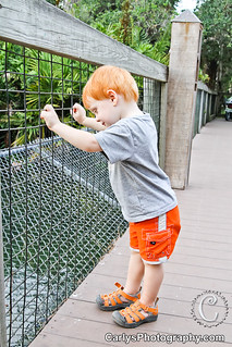 boo at the zoo (4 of 10).jpg | by Carly's Photography