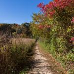 A trail at Avalon