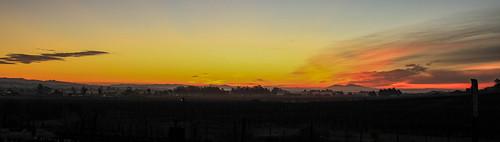 road sky orange mountains yellow sunrise landscapes vineyard highway skies stage pano winery petaluma 116 gulch