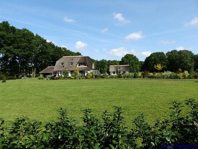 17-05-2014 Nijkerk 43Km (70)