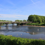 River Ribble at Avenham Park