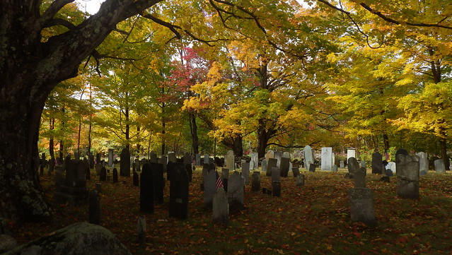 2016 Salisbury Churchyard Cemetery - IMGP6956