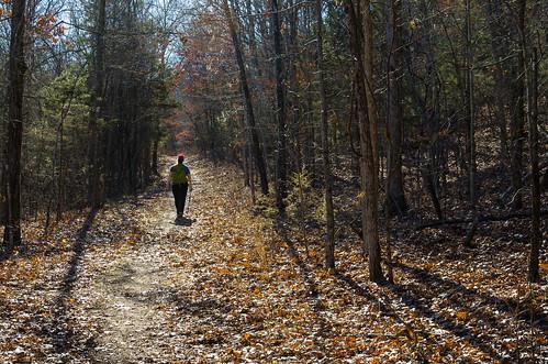 hiking gingerdavisallman ozarks ozarkswalkabout journal2015 yellowtrail busiekstateforestandwildlifearea chestnutridge missouri unitedstates us